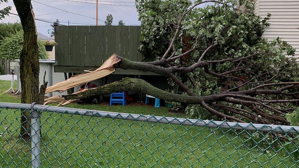 Les orages ont débuté un peu après l'heure du souper dans la région de Québec. Des dommages ont été observés assez rapidement, notamment dans Neufchâtel.