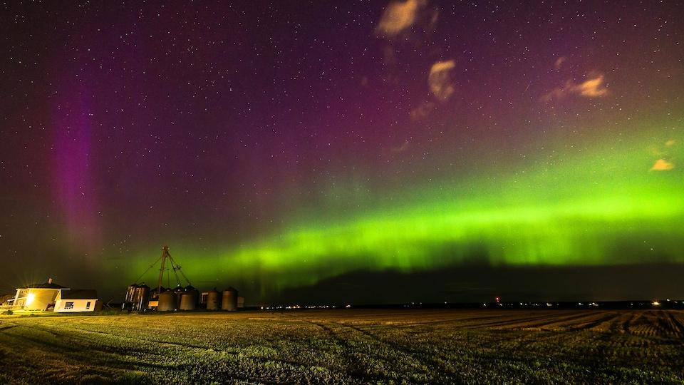 Des aurores boréales vues d'un champ agricole.