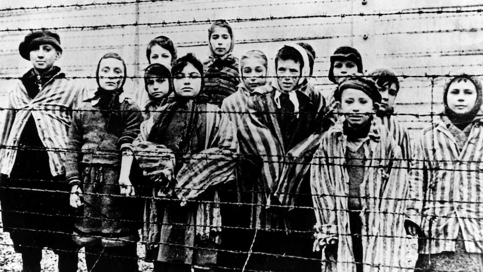 Photo de jeunes prisonniers juifs d'Auschwitz derrière des barbelés lors de leur libération.