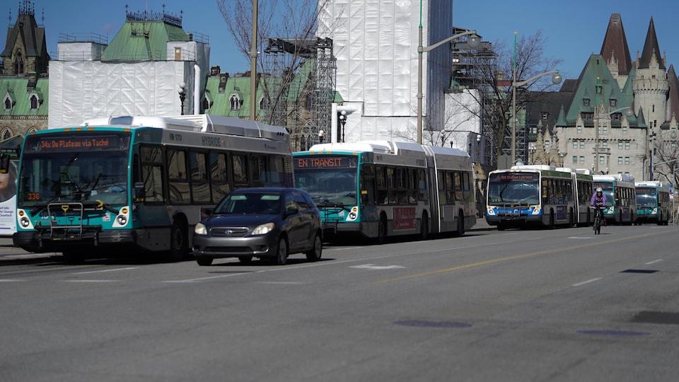 Une file d'autobus de la STO sur la rue Wellington à Ottawa.