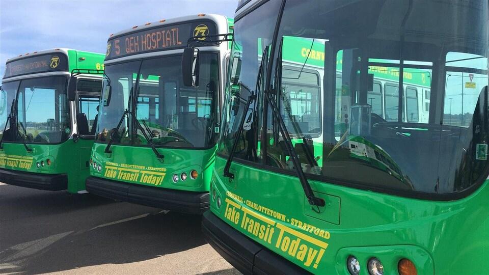 Trois autobus de couleur verte dans un stationnement.