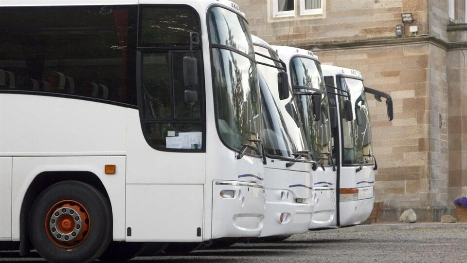 Quatre autocars blancs sont stationnés.
