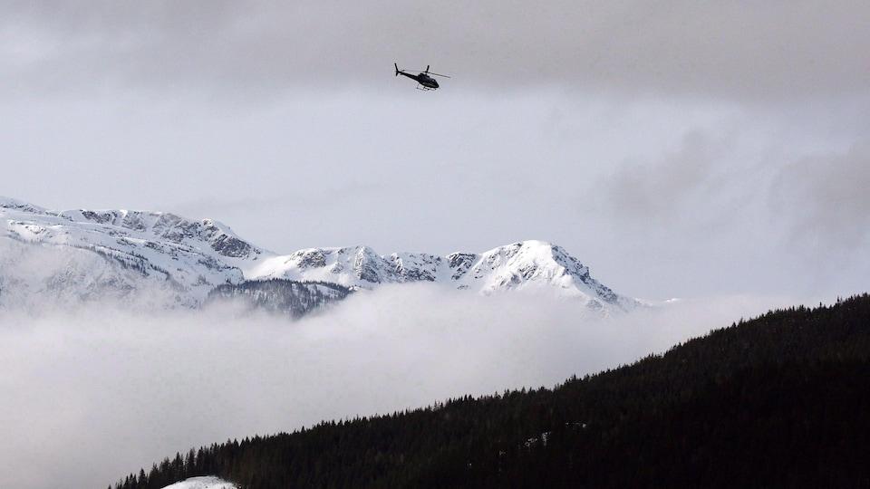 Un hélicoptère survole des montagnes enneigées et des sapins dans une zone à risque d'avalanches près de Revelstoke en Colombie-Britannique.