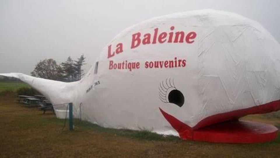 Un magasin en forme de baleine géante