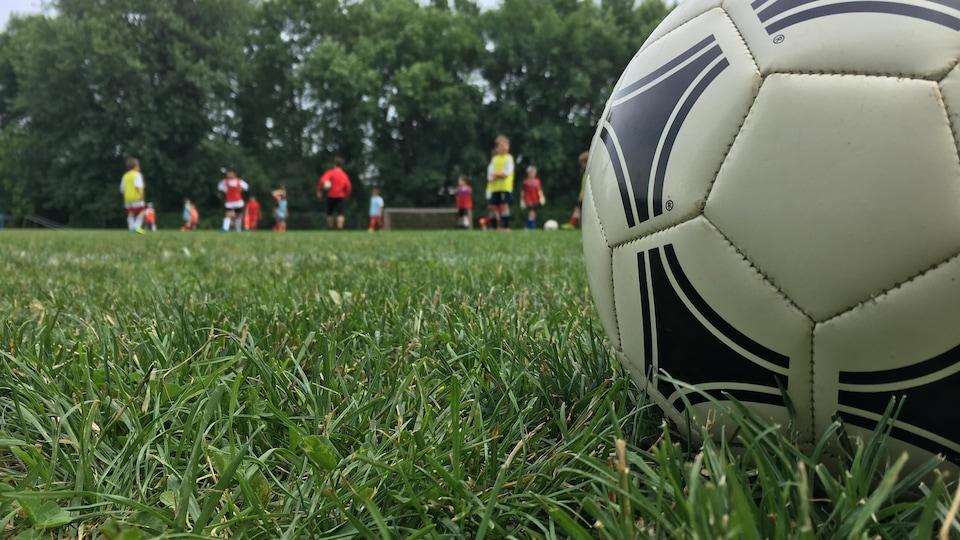 Un ballon de soccer sur un terrain