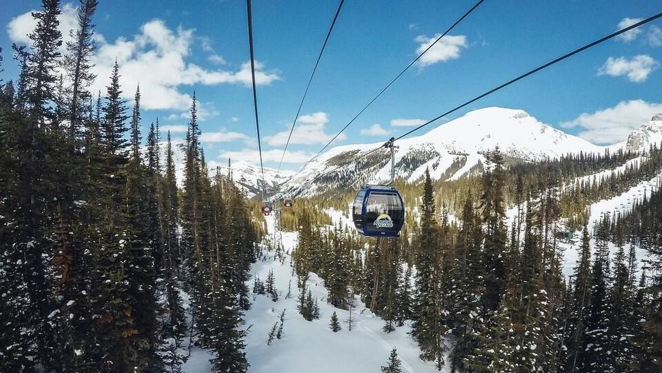 Vue sur une montagne enneigée avec des sapins. On voit aussi un remonte-pente.