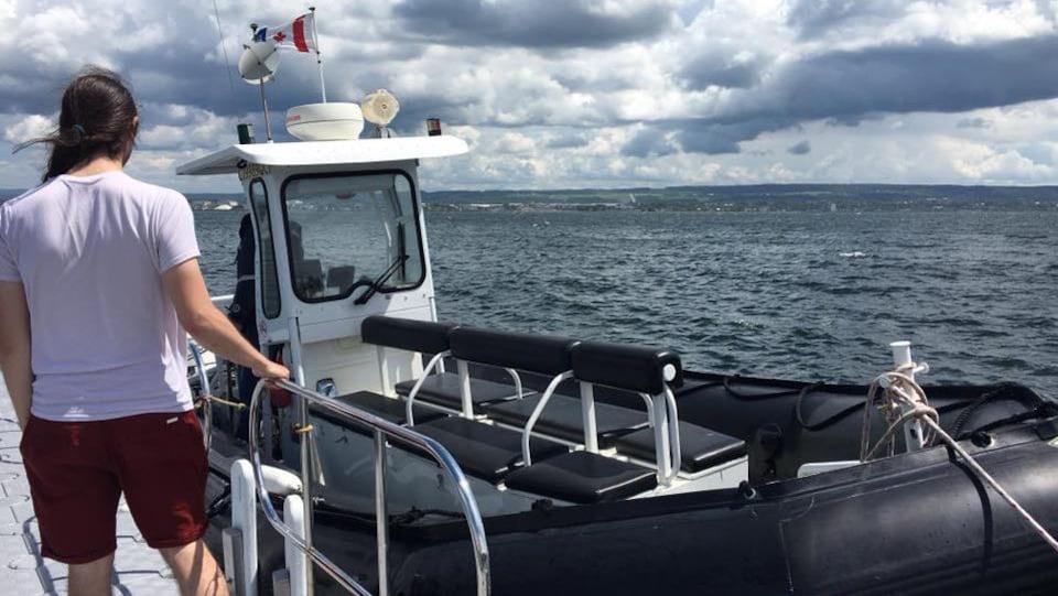 Un bateau pneumatique transporte les visiteurs de Rimouski à l'île Saint-Barnabé.