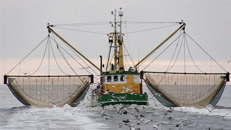 Un bateau de pêche muni de deux grands filets et suivi par de nombreux goélands
