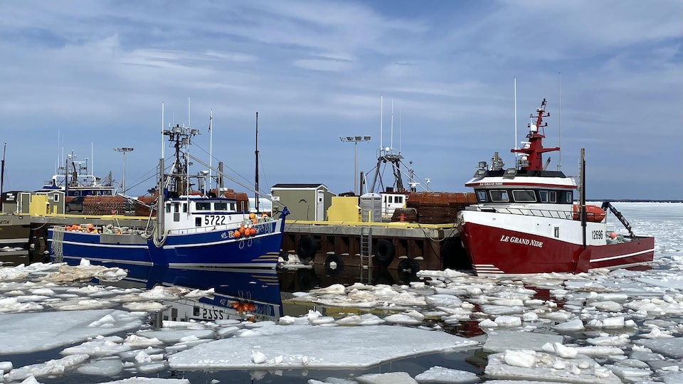 Des bateaux sont à quai à travers les glaces.