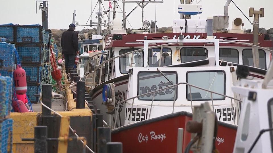 Bateaux de pêche accostés à un quai.