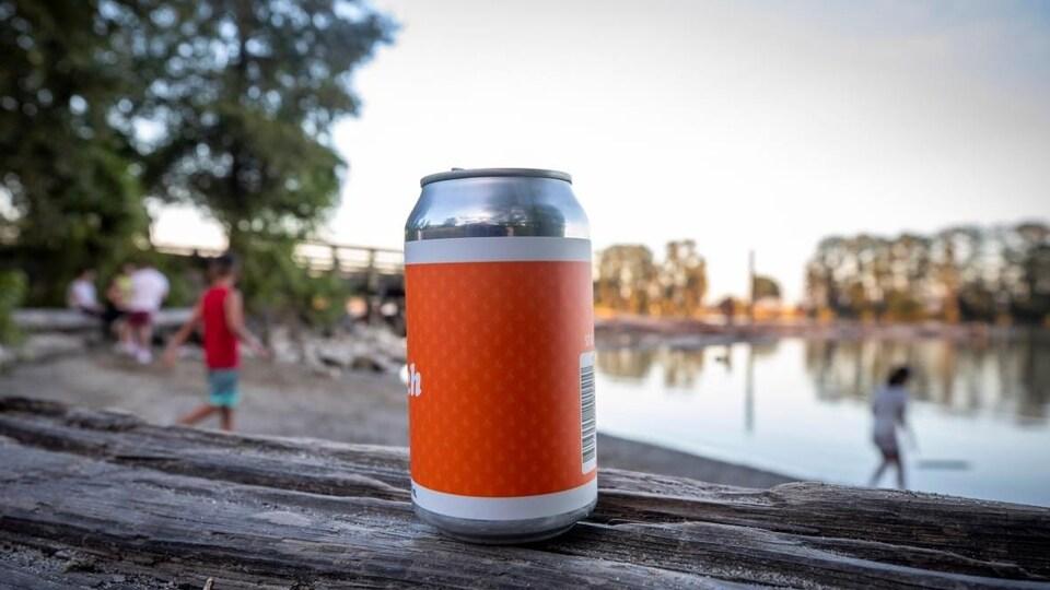 Un canette de bière sur un tronc d'arbre sur une plage.