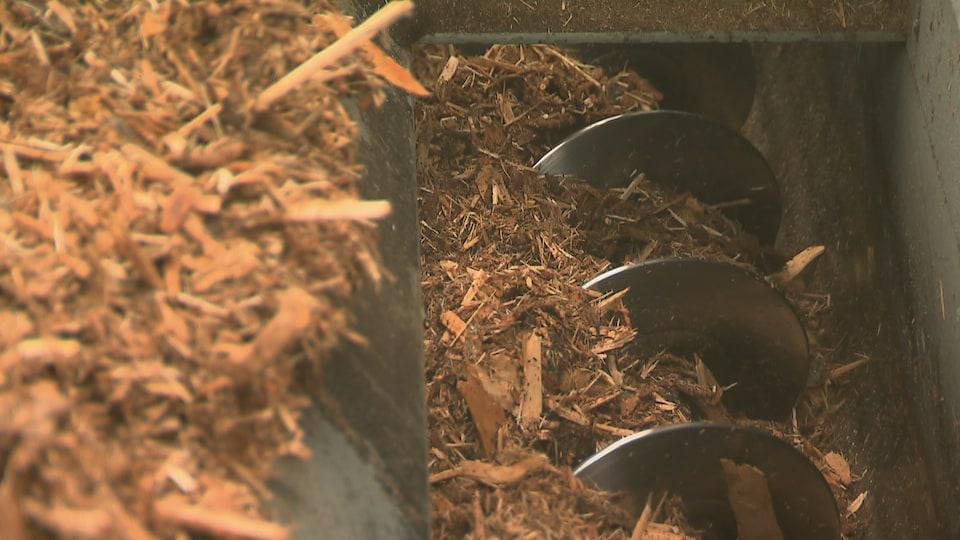 Un mécanisme entraîne de la biomasse forestière sur un convoyeur pour un système de chauffage.