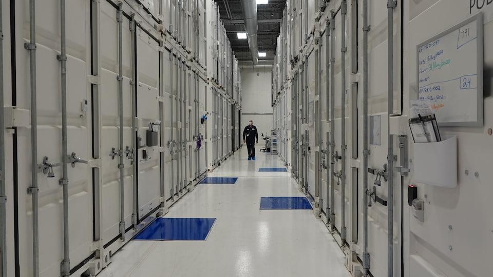 Un employé de Boaz marche au milieu de murs de conteneurs maritimes.