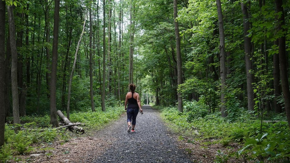Une femme marche dans un sentier entouré d'arbres.