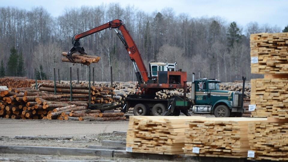 Des arbres coupés en rondins sont transportés par camion.