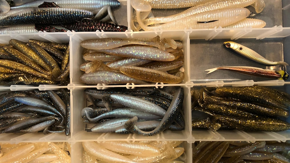 Un coffre de pêche contenant plusieurs leurres en plastique souple utilisés pour remplacer le poisson-appât à la pêche au doré.