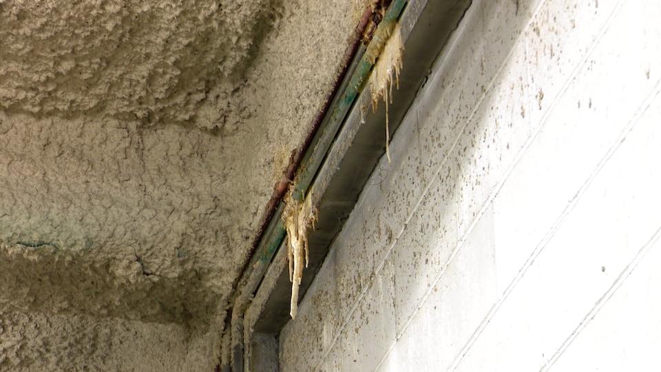 De nombreuses infiltrations d'eau sont visibles à l'intérieur de la caserne incendie de Rivière-du-Loup.