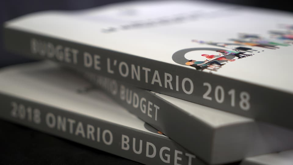Photo de volumes du budget.