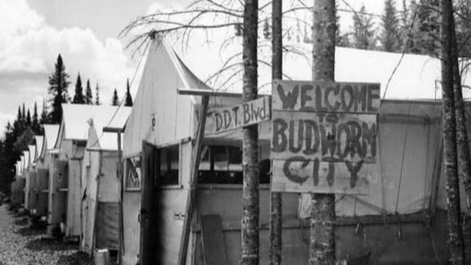 Une photo en noir et blanc du site de Budworm City.