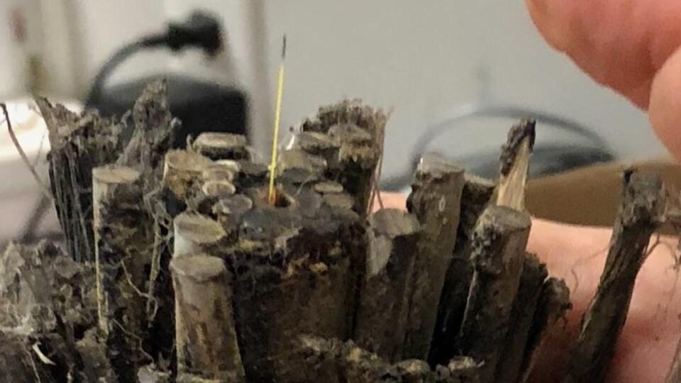 Photo du fameux câble prise lors d'un précédent bris