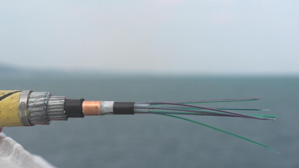 On voit l'intérieur d'un câble de télécommunications sous-marin et les fibres optiques qu'il contient.