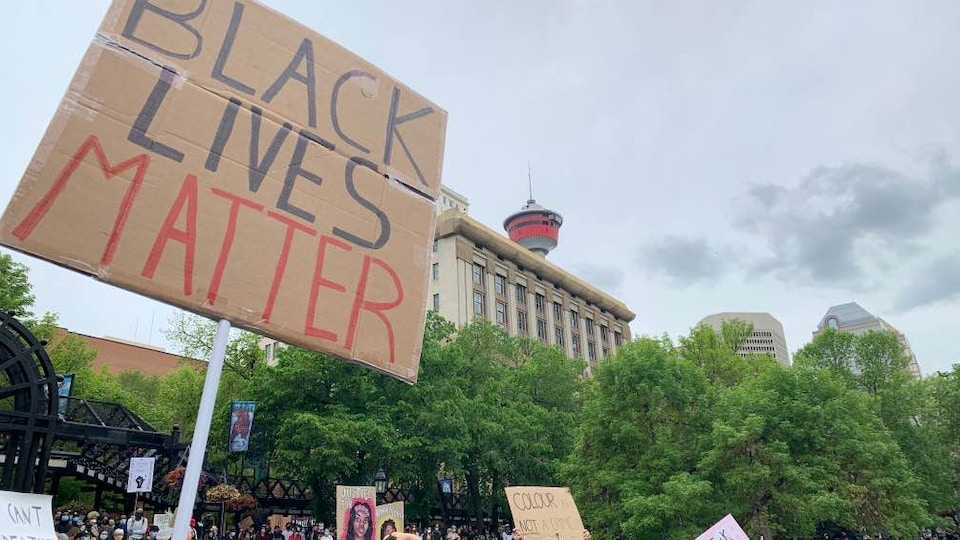 Des centaines de personnes réunies dans un parc tiennent des affiches. On peut notamment y lire Black Live Matter.