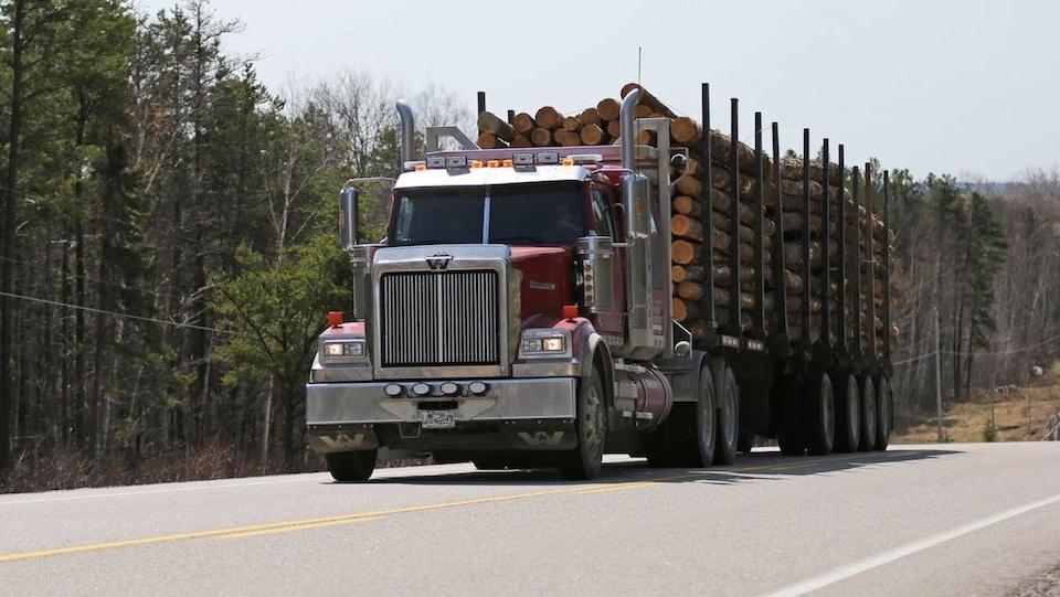 Un grumier transportant du bois.