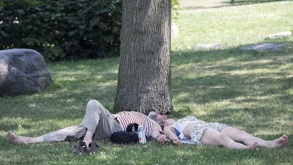 Deux personnes se reposent sous un arbre dans un parc.