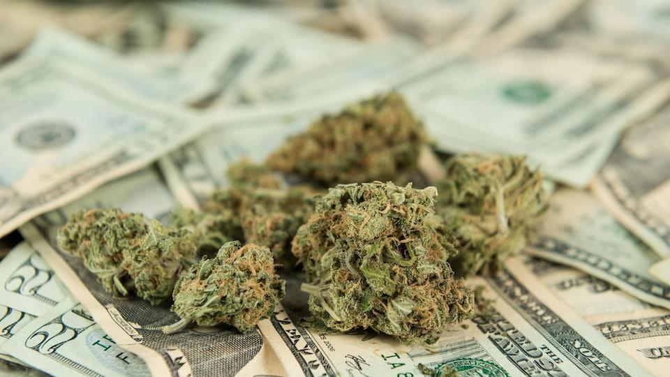 De la marijuana sur des billets.