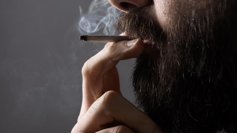 Légalisation de la marijuana
