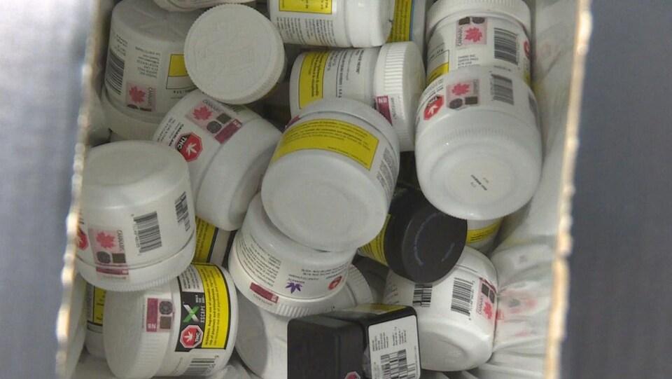 Des dizaines de pots en plastique dans un bac