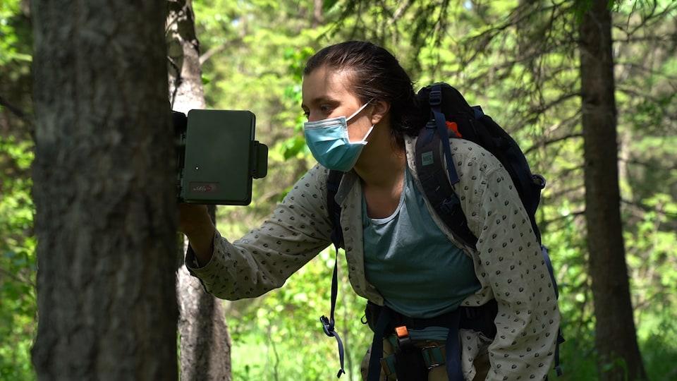 Carrie Ann Adams installe un enregistreur autonome sur un arbre.
