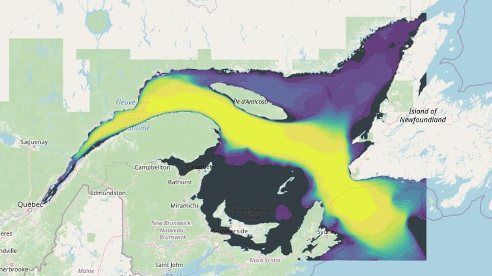 Carte montrant une zone jaune passant entre la Nouvelle-Écosse et Terre-Neuve, puis au sud d'Anticosti et dans l'estuaire jusqu'à Rivière-du-Loup environ.