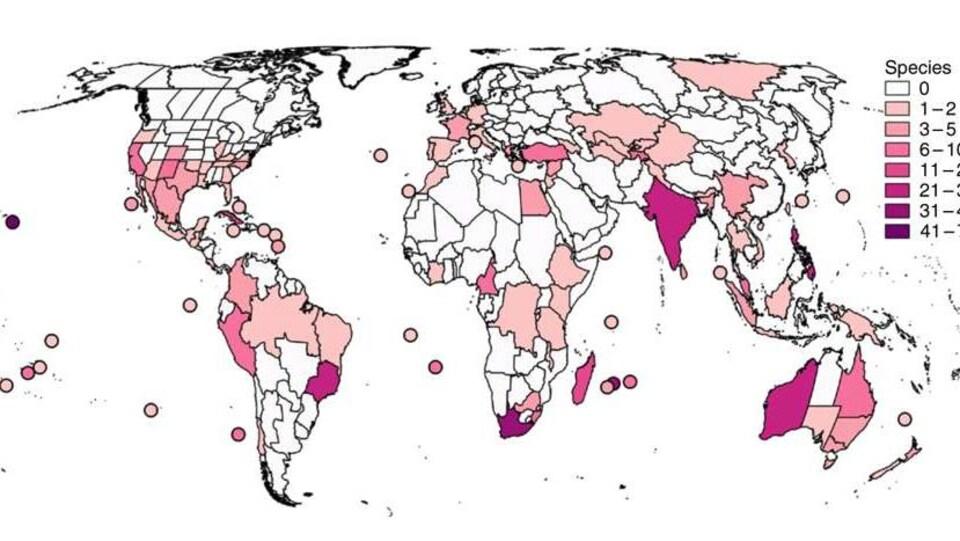 Carte du monde montrant le nombre d'espèces de plantes disparues depuis 1750.