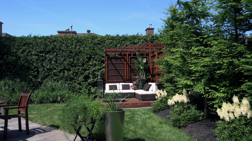 Le propriétaire de ce terrain a installé une haie de cèdres pour cacher un abri de jardin.