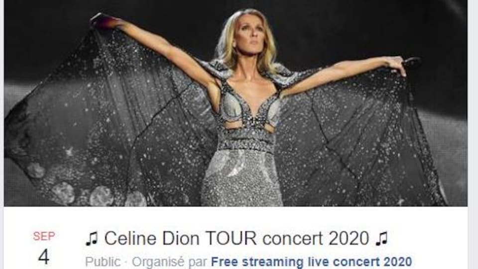 Céline Dion, sur scène, porte une robe à paillettes.