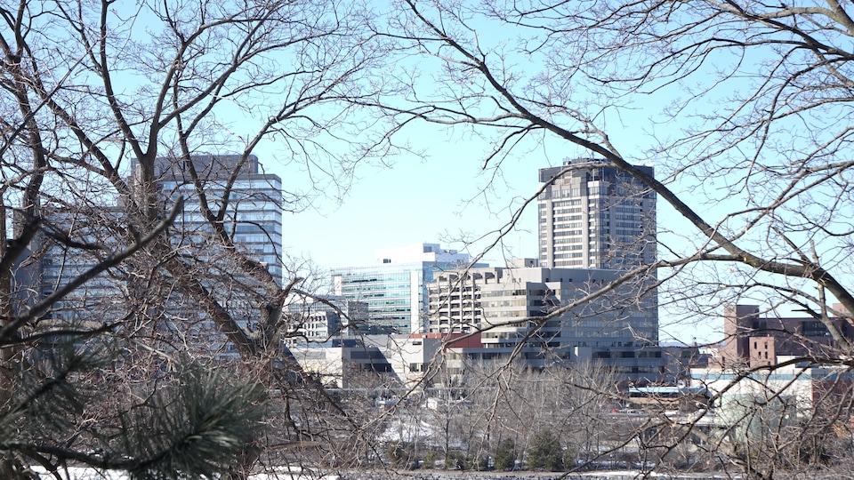 Les édifices fédéraux sont vus à travers des arbres.