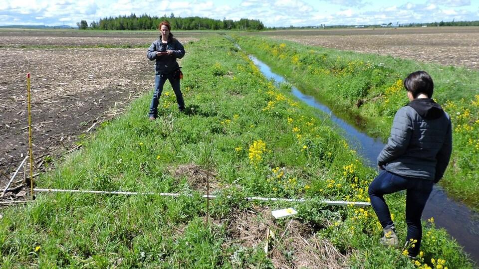 On voit la bande riveraine où pousse la végétation, en bordure d'une petit cours d'eau. Plus loin, le champ est labouré. Les deux inspectrices prennent leurs mesures.