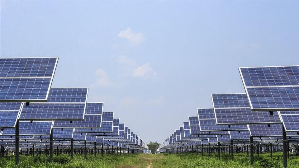 Un parc de panneaux solaires.
