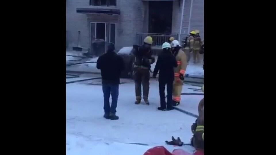 Chat dans les bras du pompier sur la terre ferme.