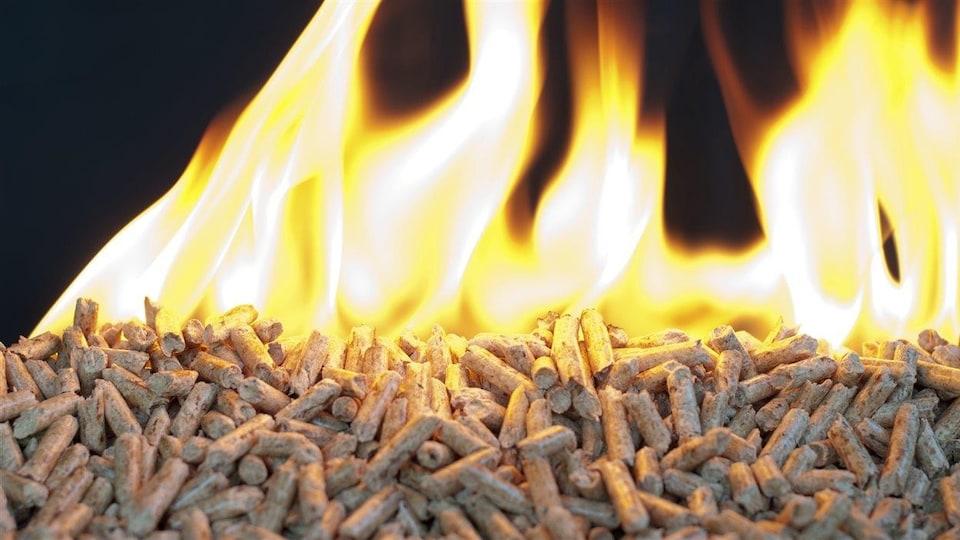 Des granules de bois en feu.