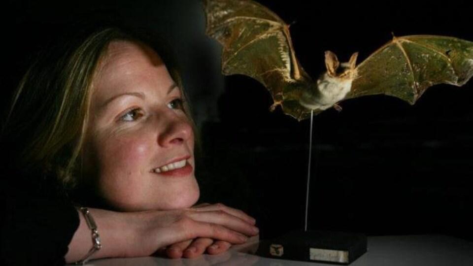 La Pre Prof Emma Teeling et un spécimen de chauve-souris.