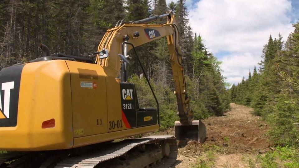 On voit une pelle mécanique qui retourne la terre d'un ancien chemin forestier.