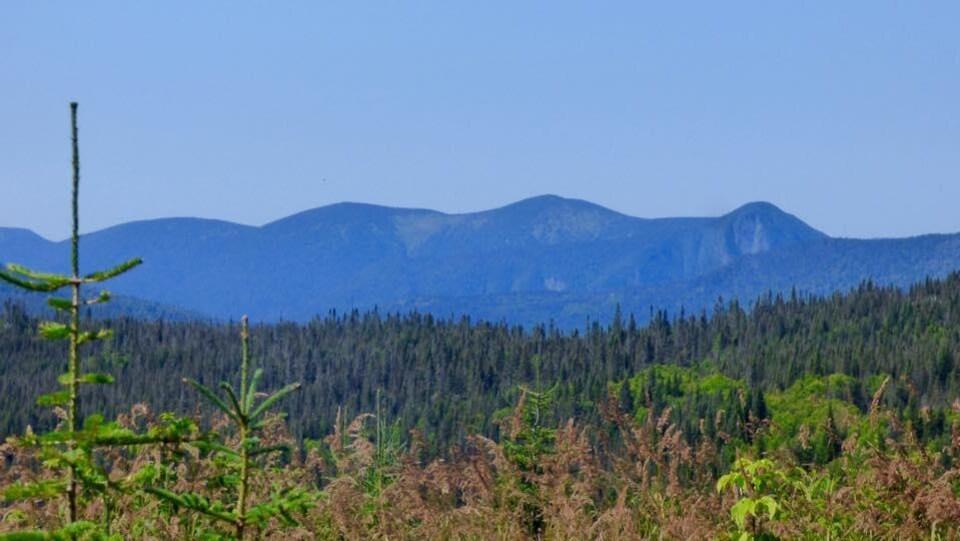 Les monts Chic-Chocs du côté de la réserve faunique de Matane