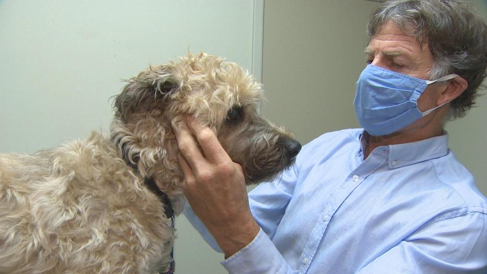 Un vétérinaire portant un masque soigne un chien en Colombie-Britannique.