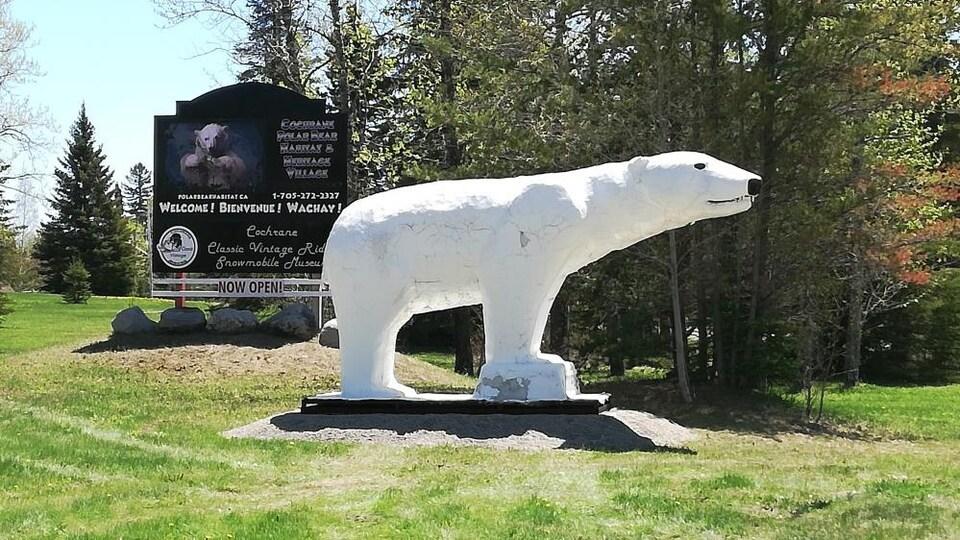 Une statue d'un ours polaire sur un terrain.