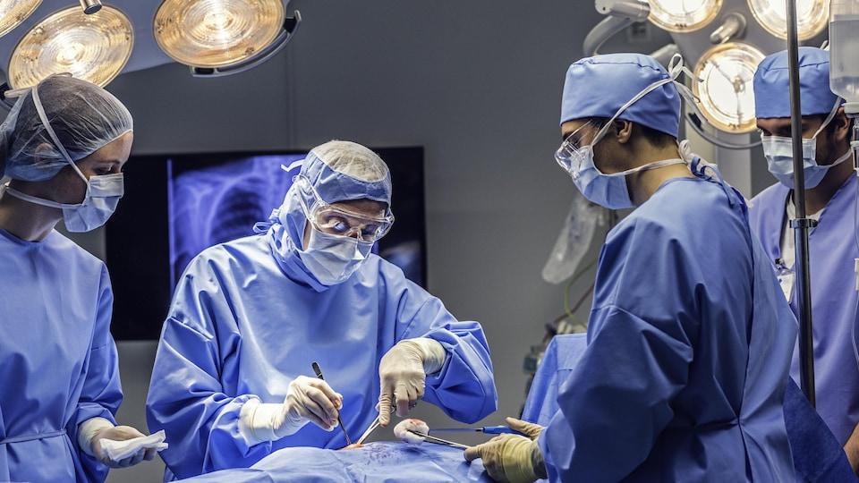 Des chirurgiens procèdent à une transplantation d'organe.