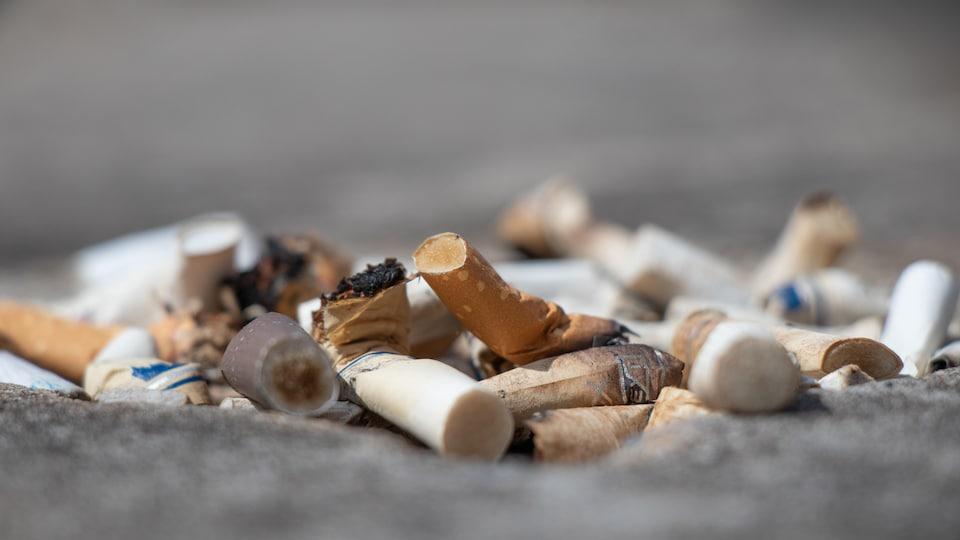 Des mégots de cigarette.
