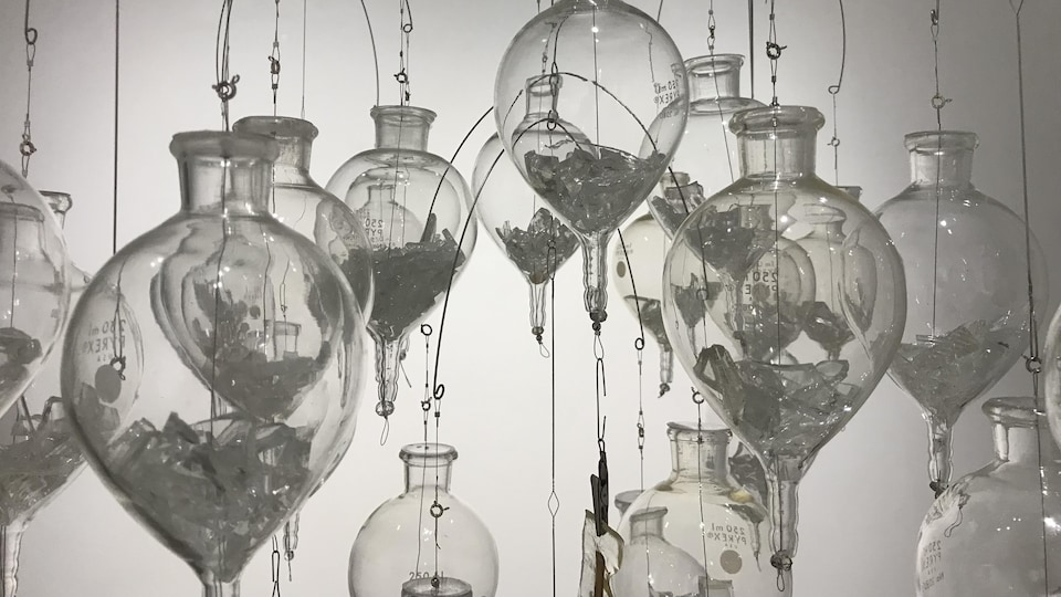 Claudie Gagnon, «Mécanique des fluides», 2020, lentilles optiques, insectes naturalisés, métal, 84 x 81 cm (détail).