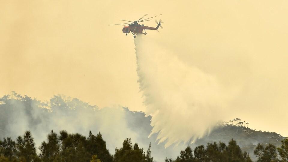 Un hélicoptère jette de l'eau sur un feu de forêt.